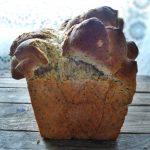 Kruh s razdjeljkom (s makom, senfom i medom)